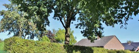 Building land for sale - Korte Heide 66<br /> 3290 Diest