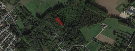 Forest for sale - Louwijn 13<br /> 1730 Asse