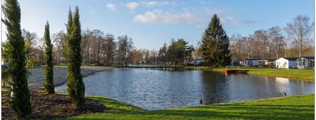 Recreational area for sale - 3640 Kinrooi (Hidden address)